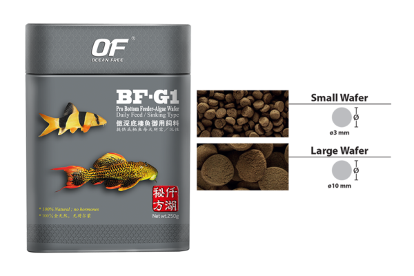 Of Pro Series Bf G1 Pro Bottom Feeder Algae Wafer