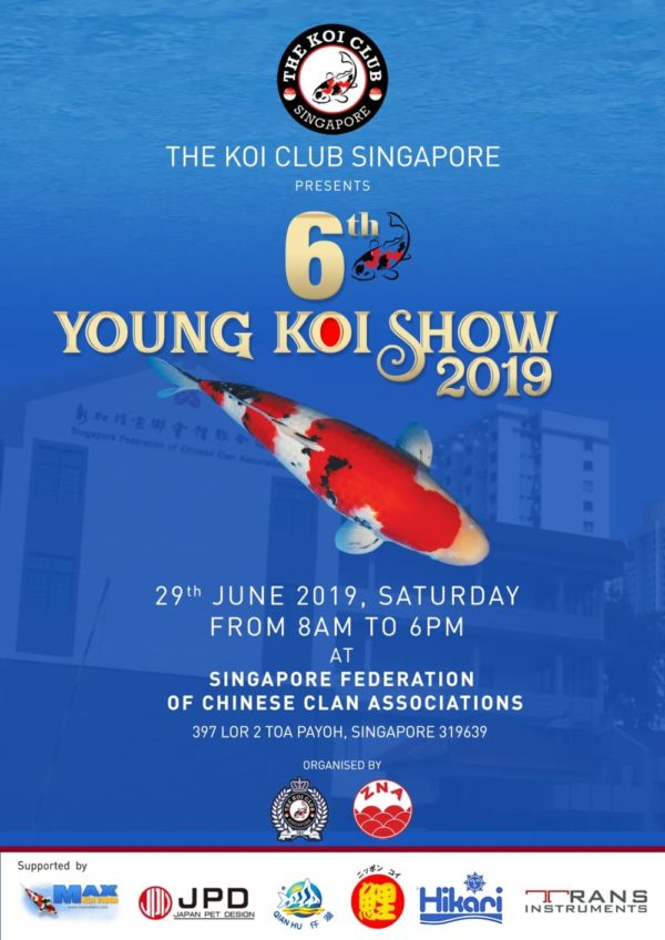 6th Young Koi Show 2019